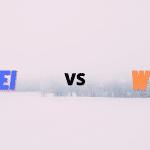 LEI vs WOL